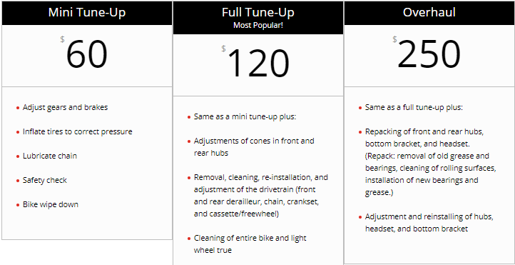 bike tune-up charges